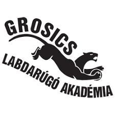 Sz.-Cs.GrosicsAkadémia