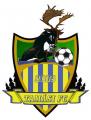 TAMÁSI 2009 FC